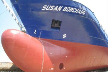 SUSAN_BORCHARD